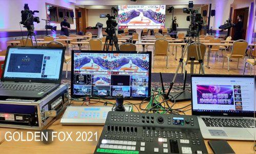 allcomb golden fox 2021